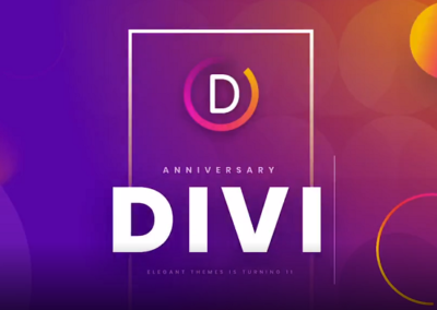 divi theme information video